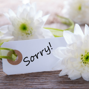Sorry - why mums apologise too much and how to stop - More to Mum